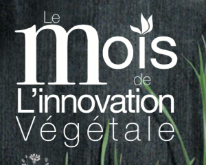 MoisInnovation